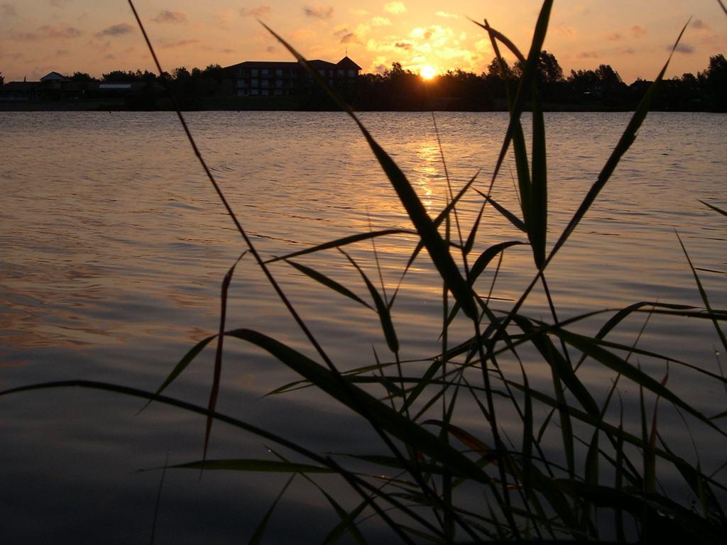 Sonnenuntergang Großefehn