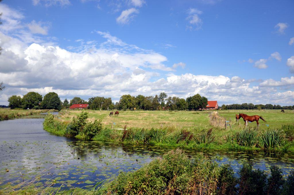 Landschaft Warsingsfehnkanal