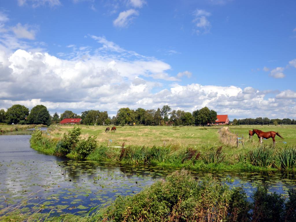 Moormerland Landschaft